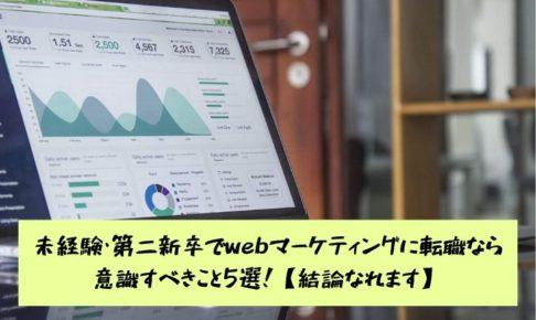 inexperience-web-marketing