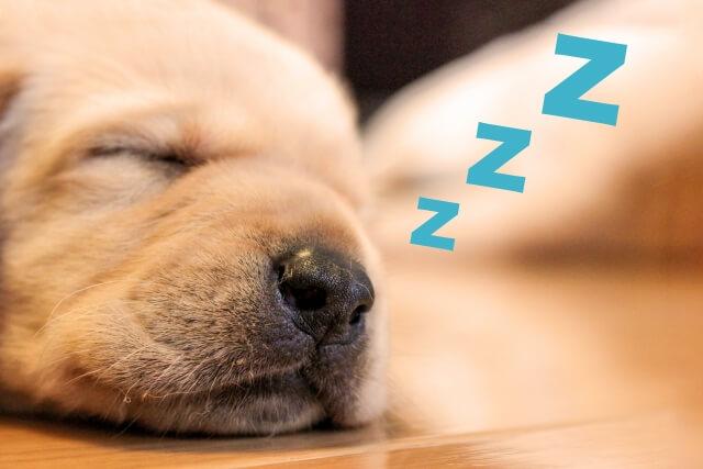 仕事 睡眠時間
