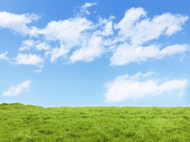 隣の芝は青く見える